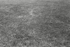 canvas thread blown by the wind while flying a kite Long Meadow variable dimension documentary photograph, gelatin silver print 2013