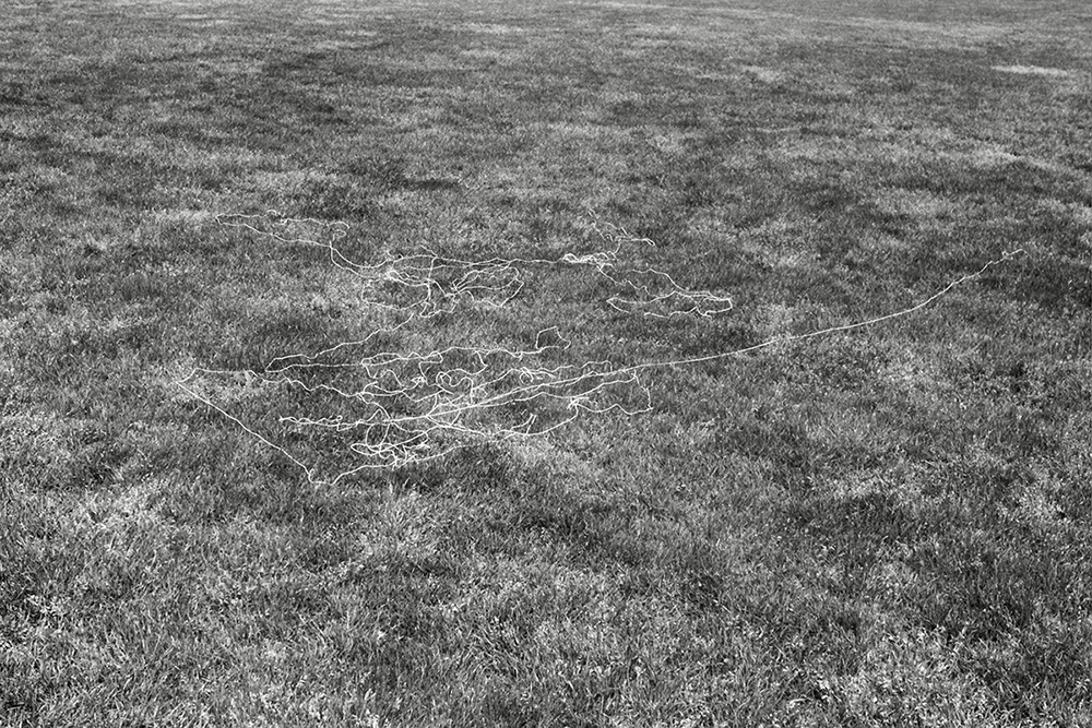 canvas thread blown by the wind while flying a kite North Meadow variable dimension documentary photograph, gelatin silver print 2014