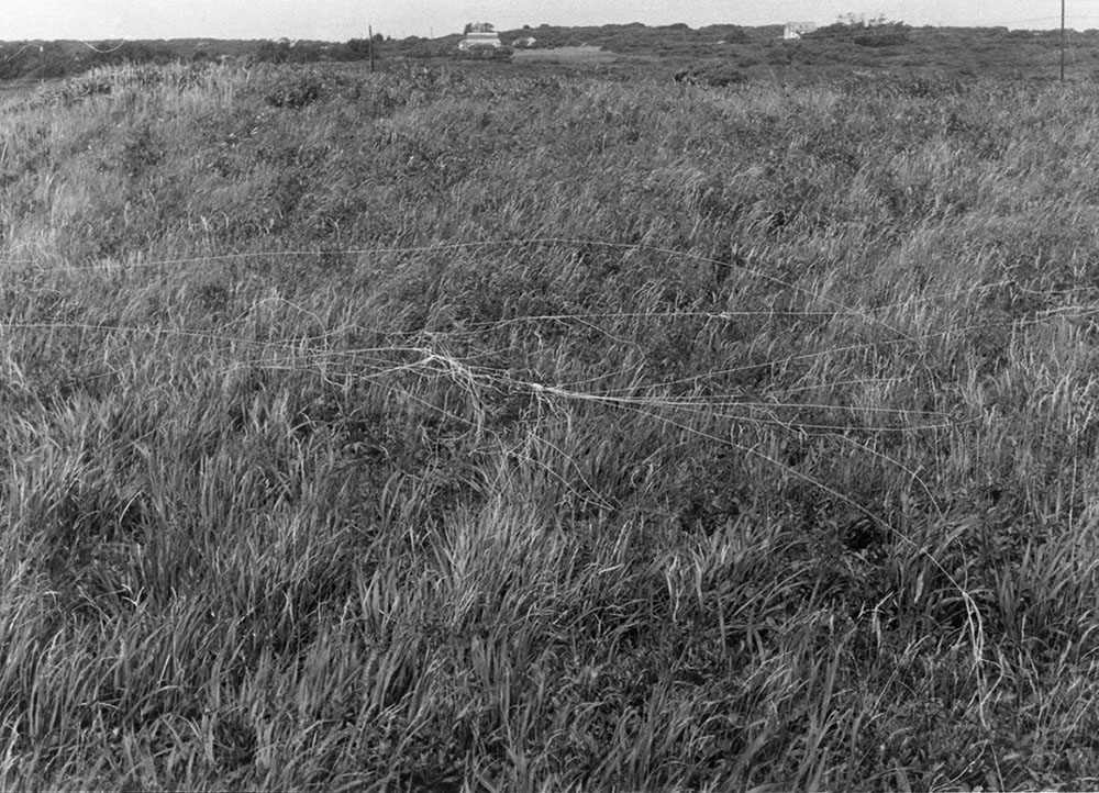 string blown by the wind while flying a kite Aquinnah, Martha's Vineyard, Massachusetts latitude and longitude: 41.3352 degrees N, 70.8008 degrees W variable dimensions documentary photograph 1976